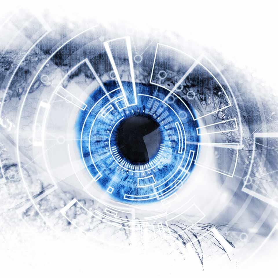 You are currently viewing Imprese individuali e società: i dati obbligatori sull'homepage del sito (per evitare multe salate)